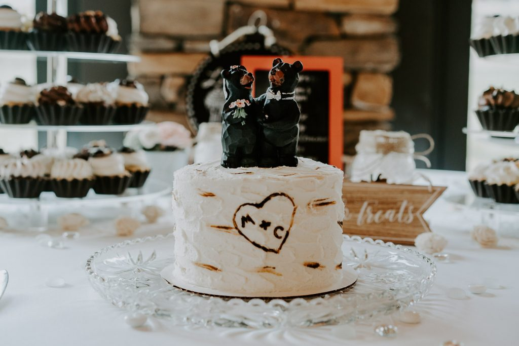 Colorado Wedding, Colorado Wedding Photographer, Mount Princeton Hot Springs, Buena Vista, Elopement Photography, aspen wedding cake