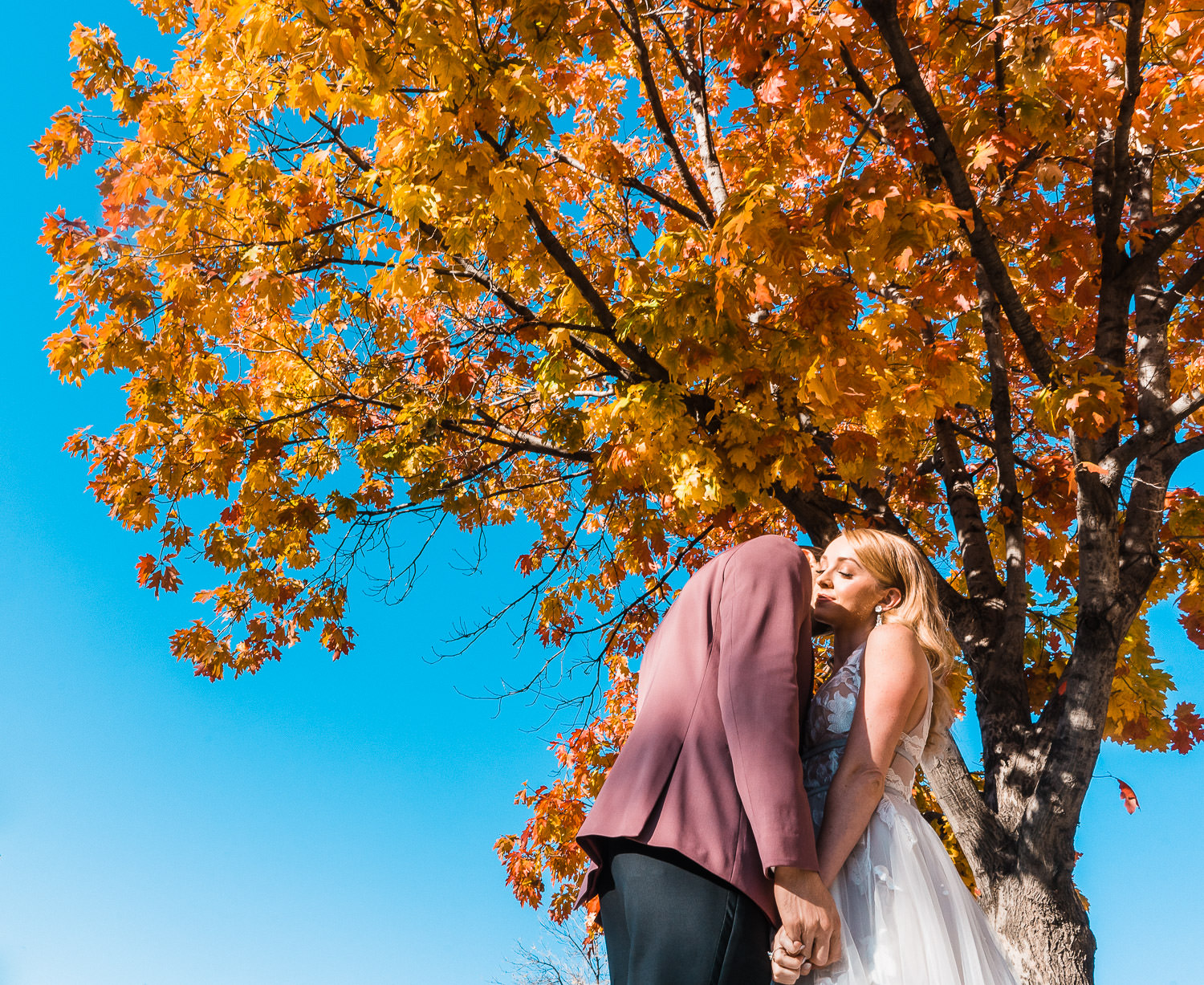 Best_Of_2019_Elopements_Weddings_Colorado-152
