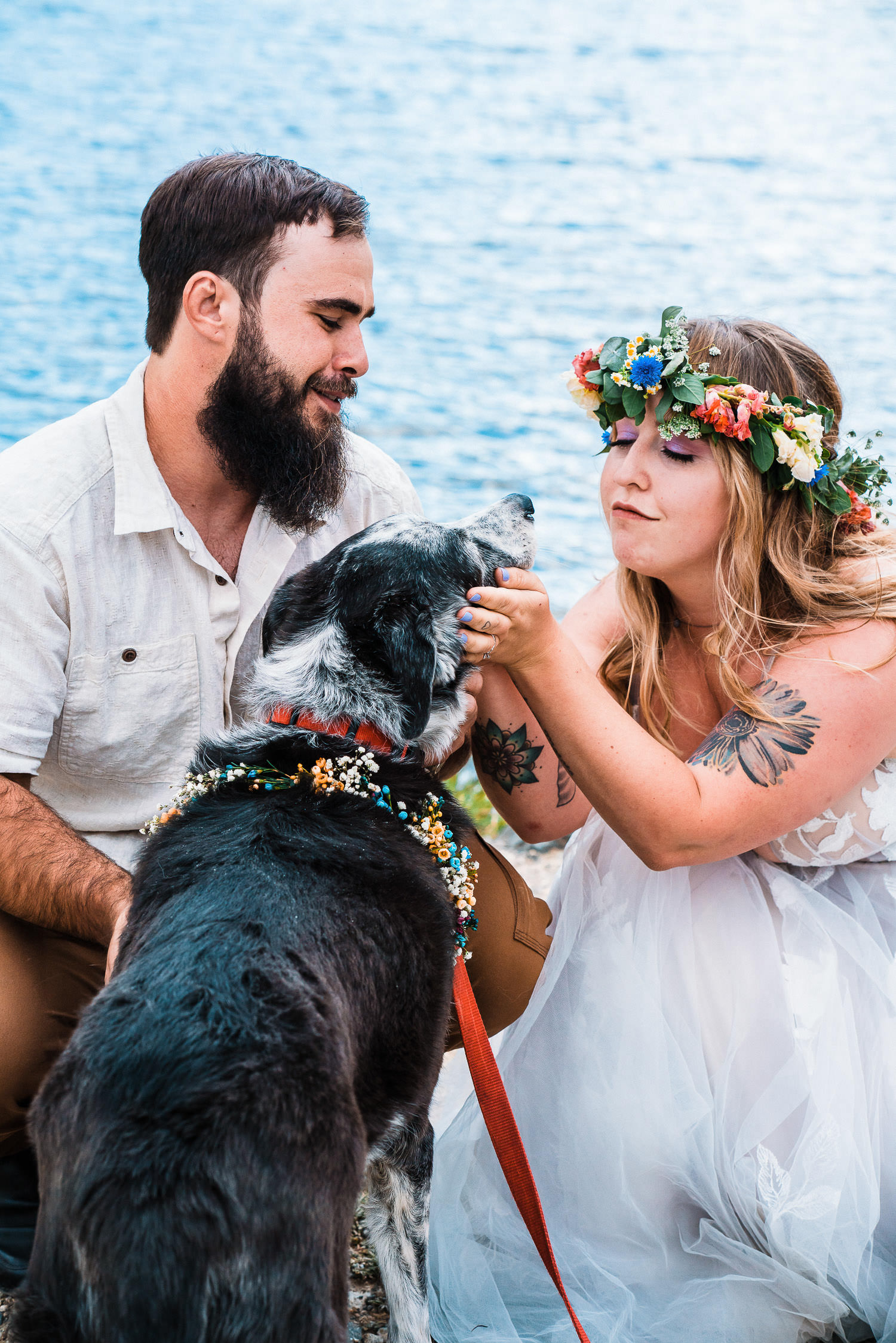 Your pets can sign your marriage license